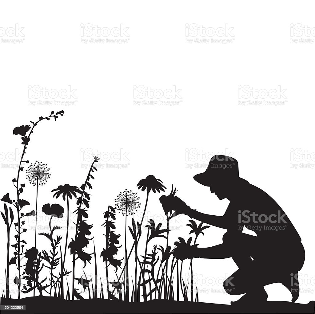Gardener vector art illustration