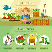 Gardening, growing vegetables, natural food farmer products