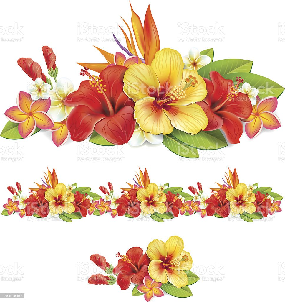 Garland of tropical flowers vector art illustration
