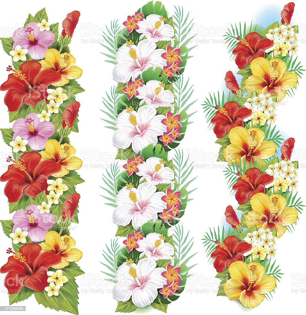 Garlands of hibiscus flowers royalty-free stock vector art