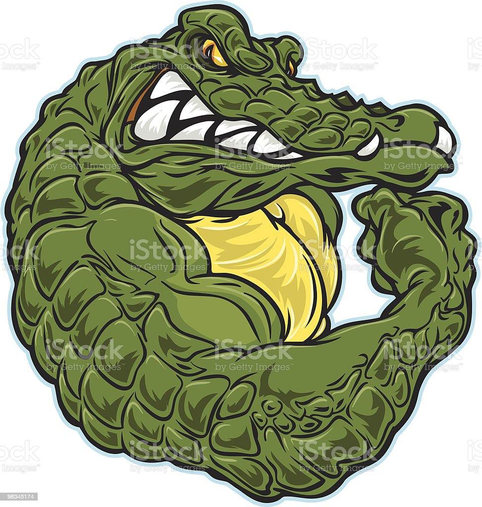 gator Flex royalty-free stock vector art