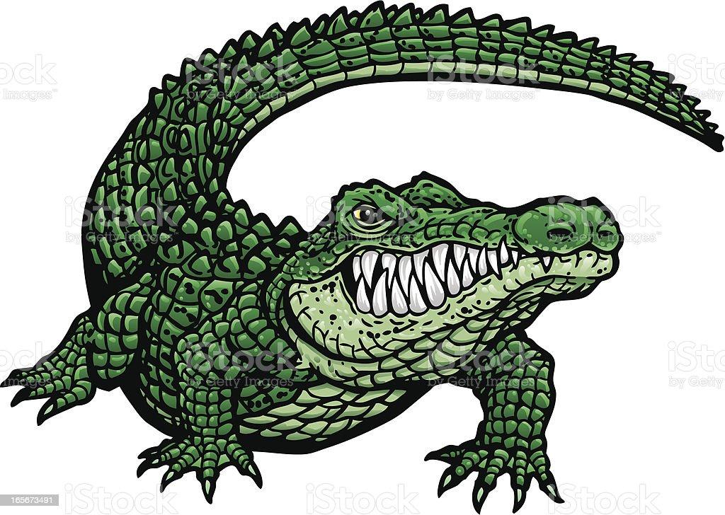 Gator G vector art illustration