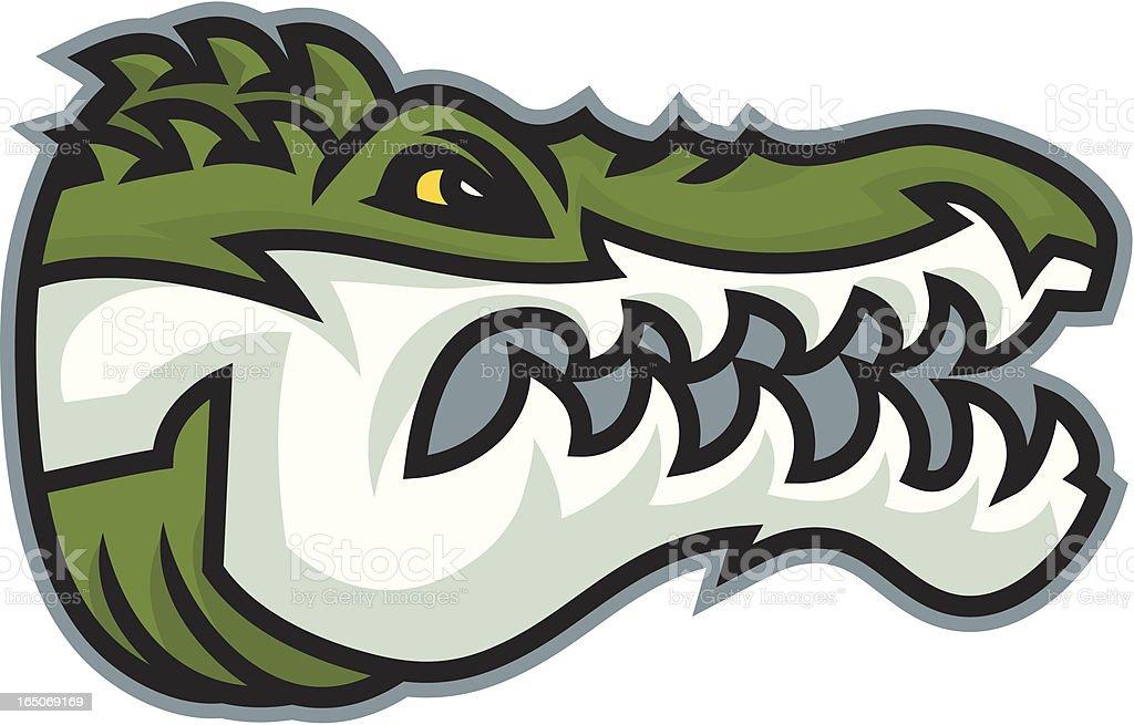 Gator Head royalty-free stock vector art