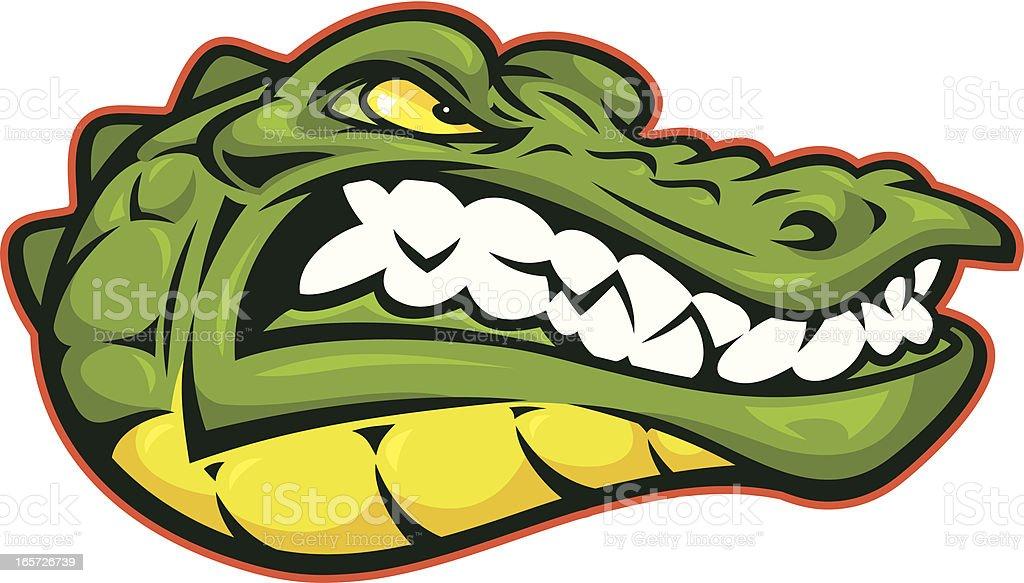 Gator Head vector art illustration