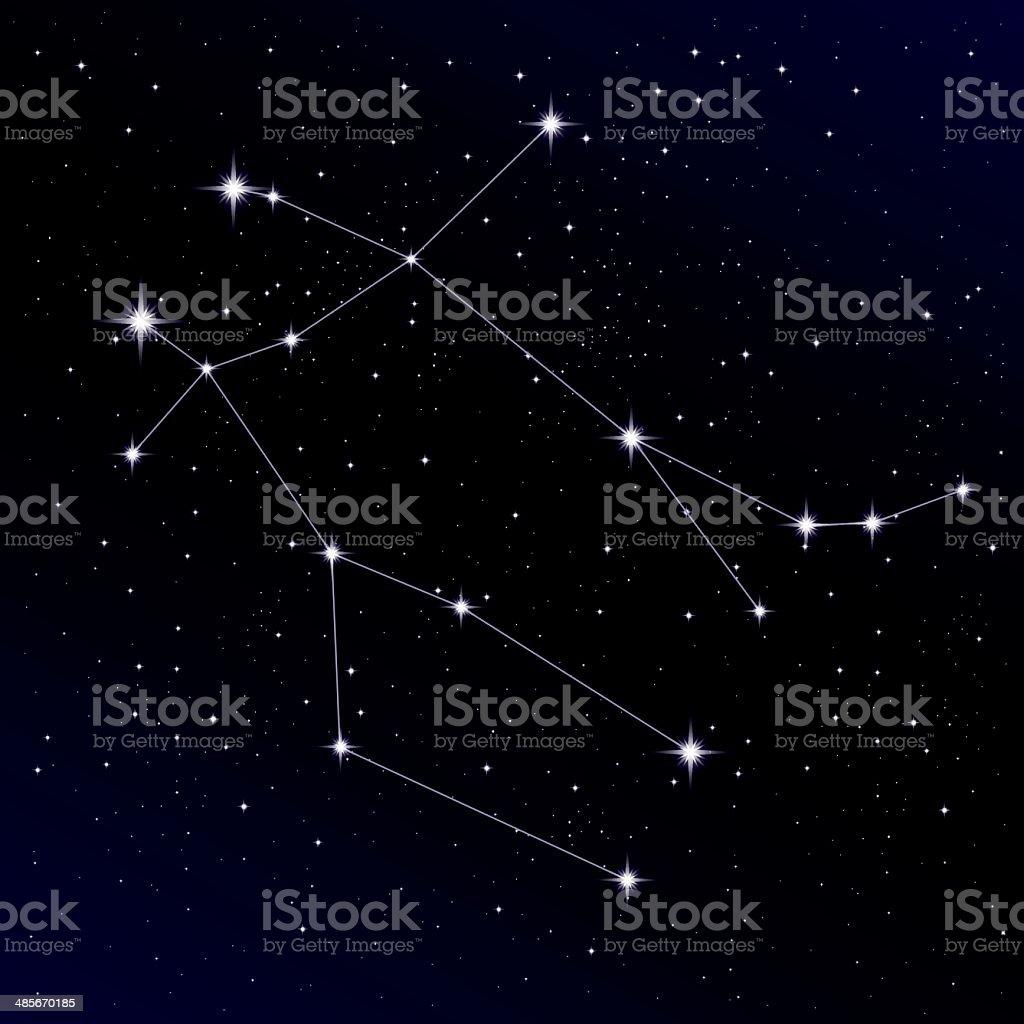 Gemini constellation vector art illustration