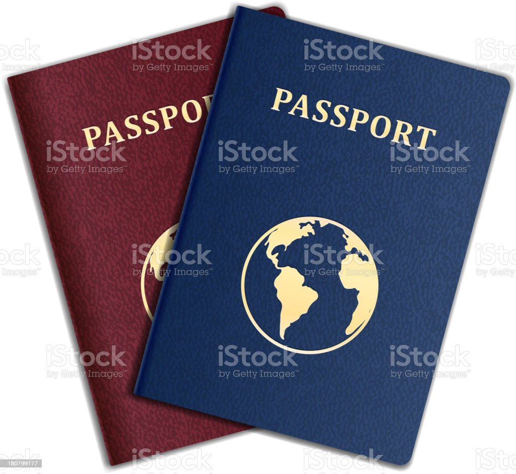 Generic passports embossed with gold letters vector art illustration