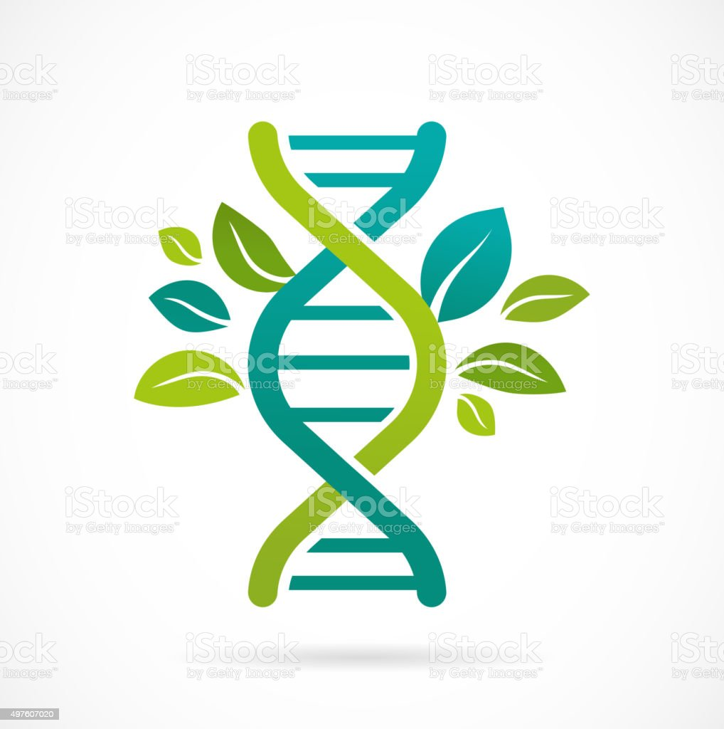 DNA, genetic icon - tree with green leaves vector art illustration