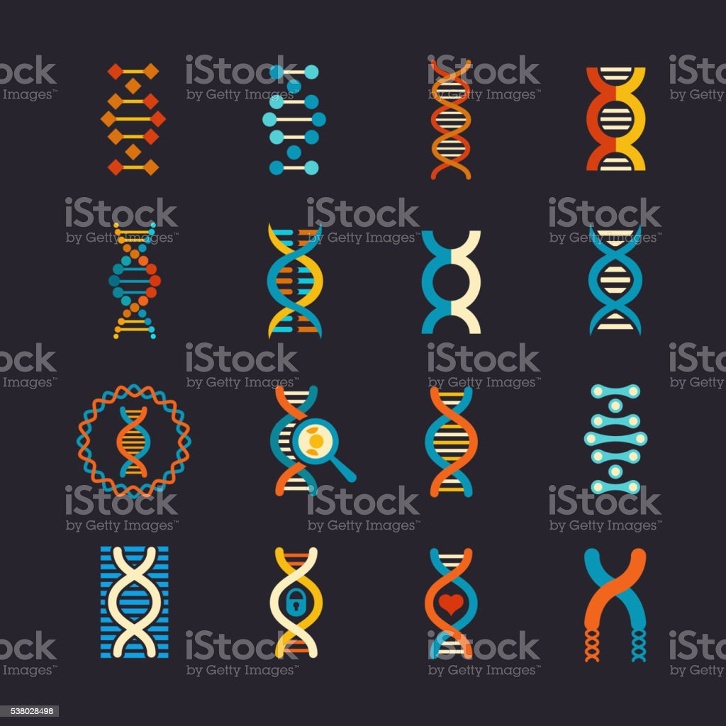 DNA genetic vector flat icons set vector art illustration