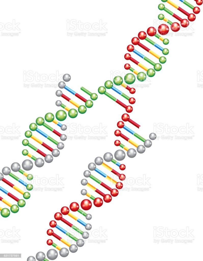 DNA genetically modified vector art illustration