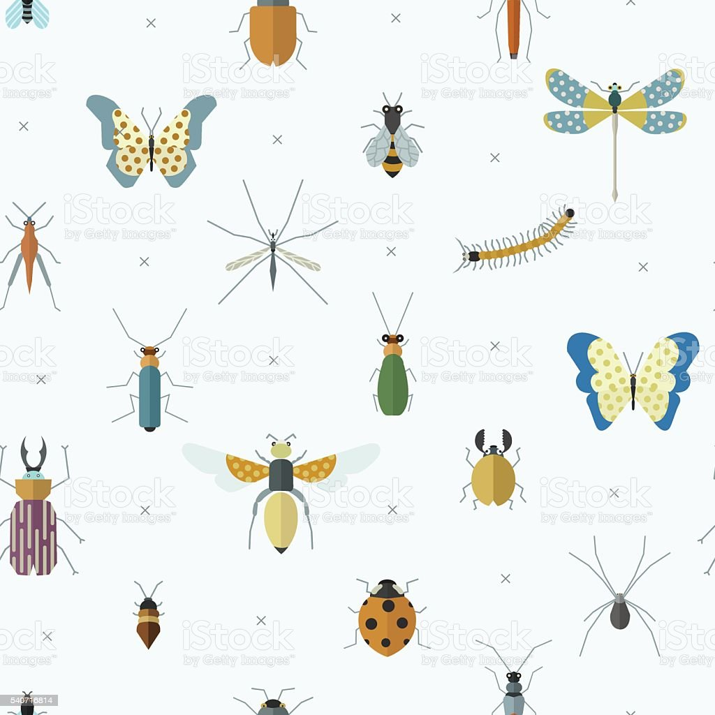 Geometric pattern with bugs and insects. vector art illustration