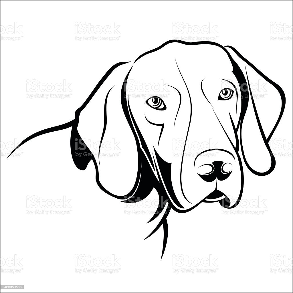 German Shorthaired Pointer royalty-free stock vector art