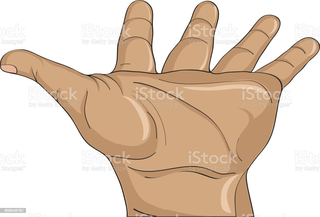 Gesture open palm. Hand gives or receives. Vector illustration on white background. Empty space for advertising vector art illustration