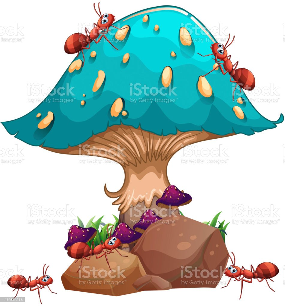 giant mushroom and a colony of ants royalty-free stock vector art