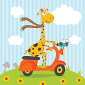giraffe bird riding on scooter
