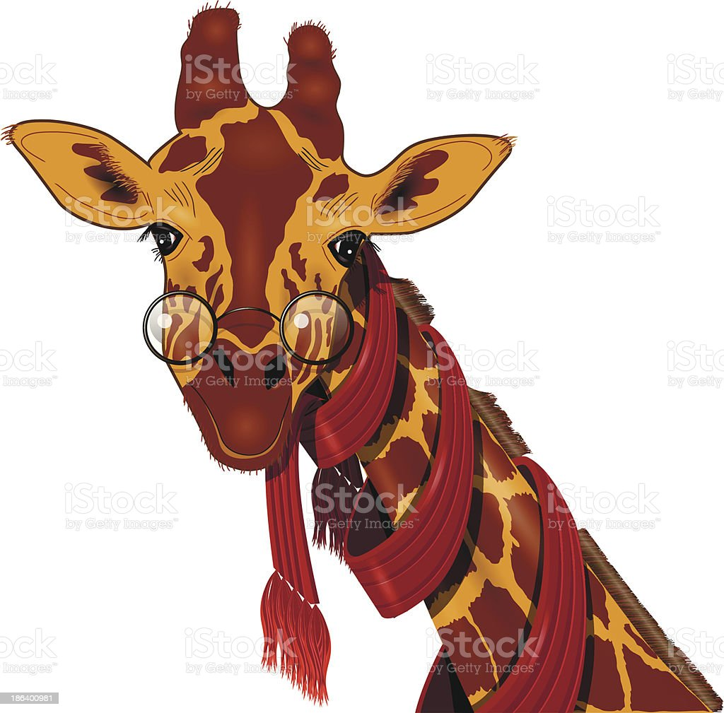 giraffe in a scarf vector art illustration