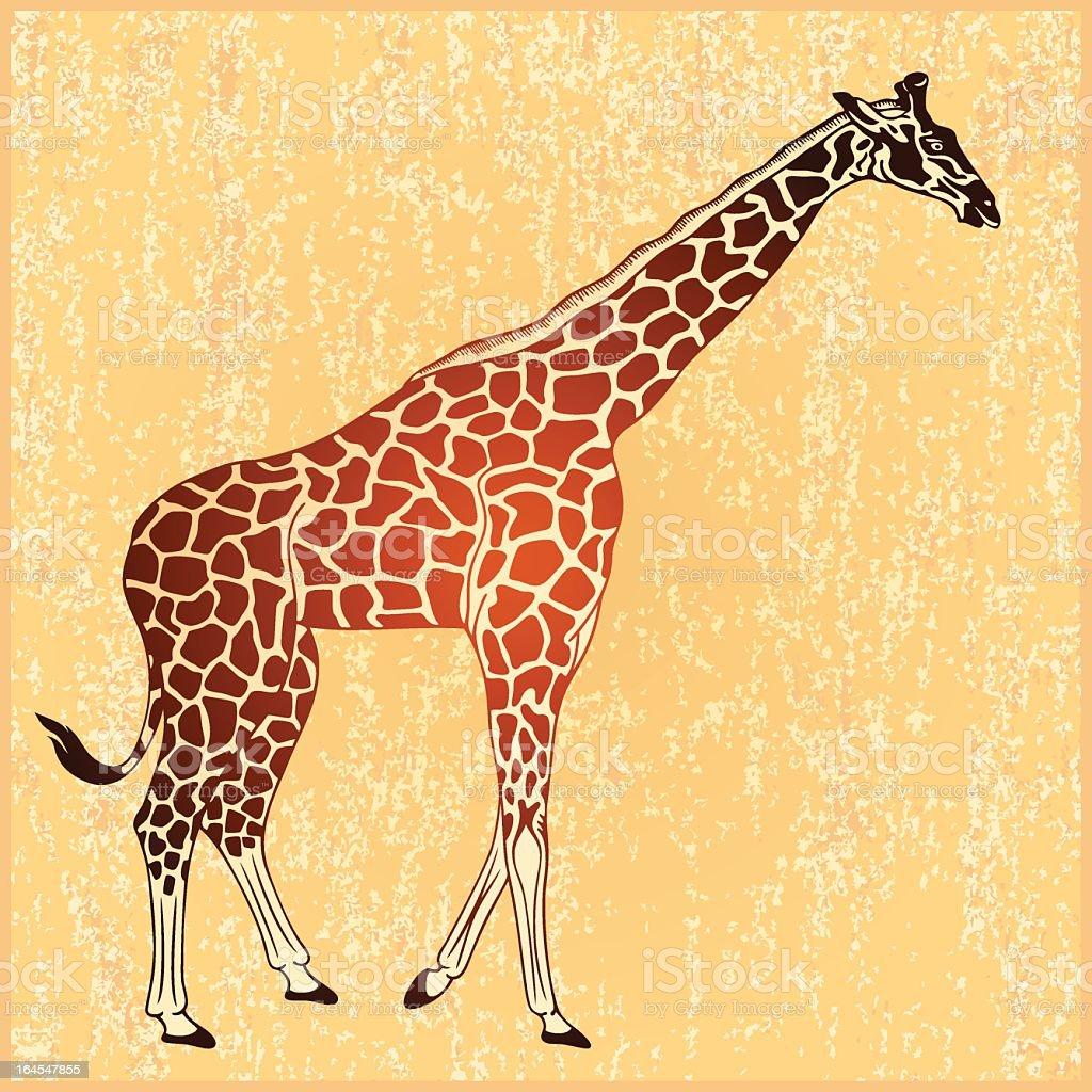 Giraffe (vector) royalty-free stock vector art