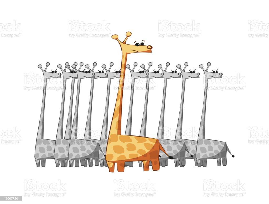 giraffes isolated vector art illustration