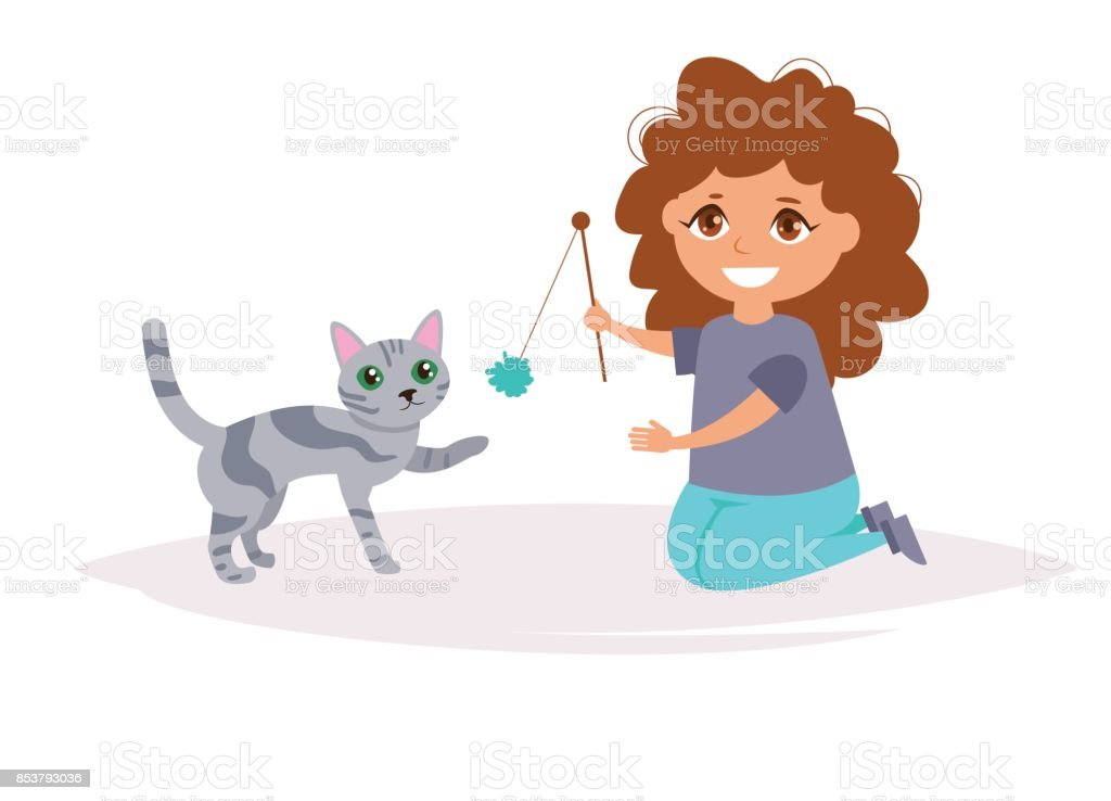 Girl and the cat. American breed. Vector. Cartoon. Isolated art on...