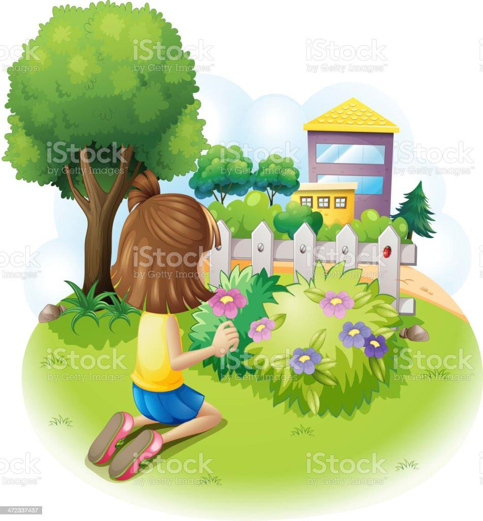 Girl picking flowers royalty-free stock vector art