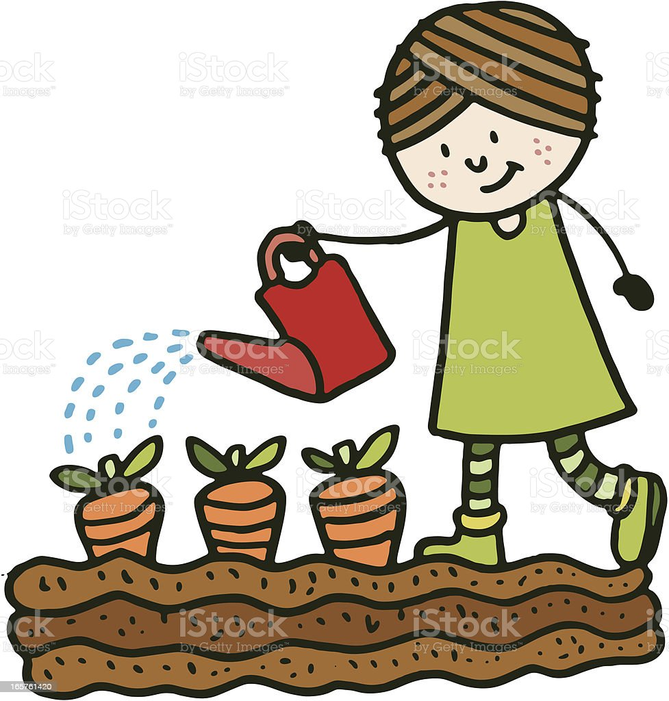 Girl watering carrots royalty-free stock vector art
