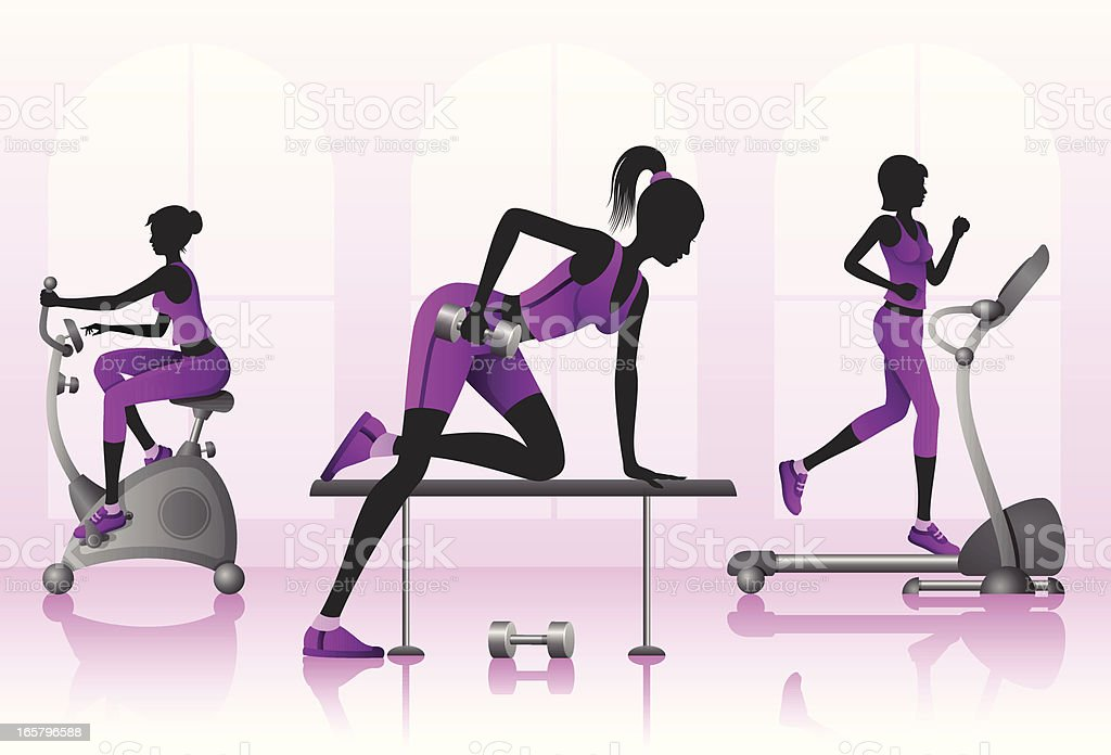 Girls exercising in a gym royalty-free stock vector art