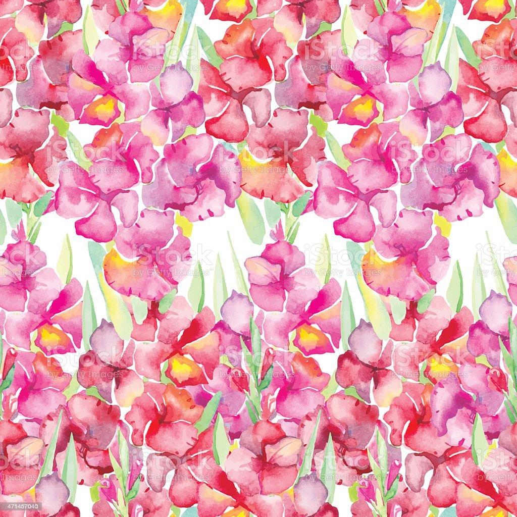 Gladiolus. Floral pattern vector art illustration