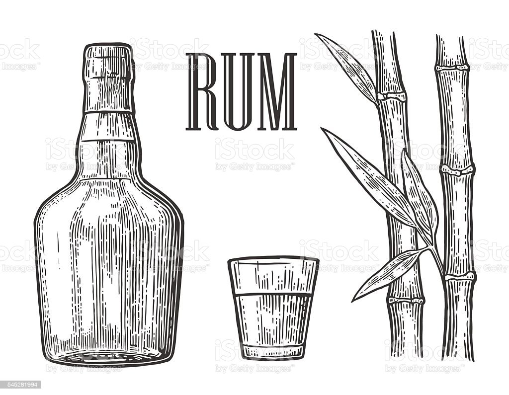 Glass and bottle of rum with sugar cane. vector art illustration