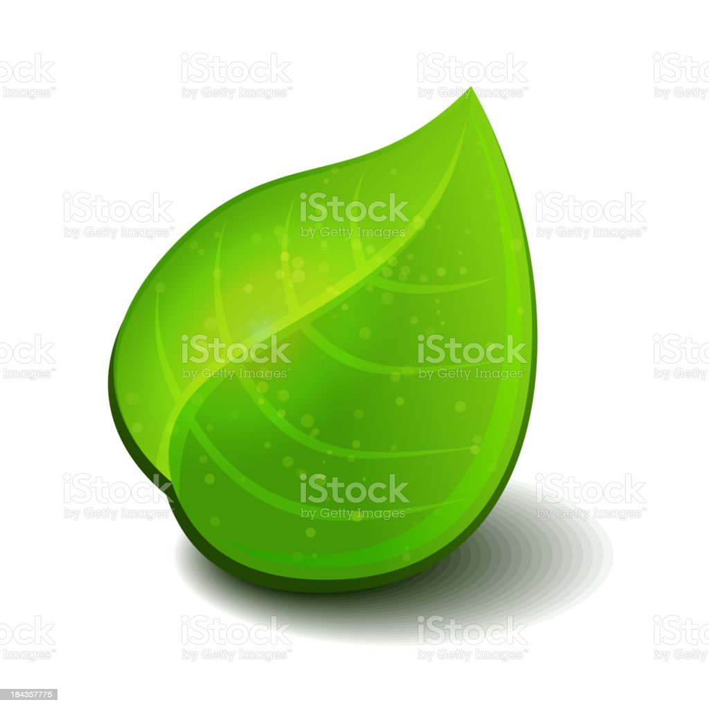 Glossy green leaves royalty-free stock vector art