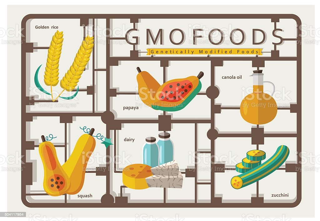 Gmo foods vector art illustration