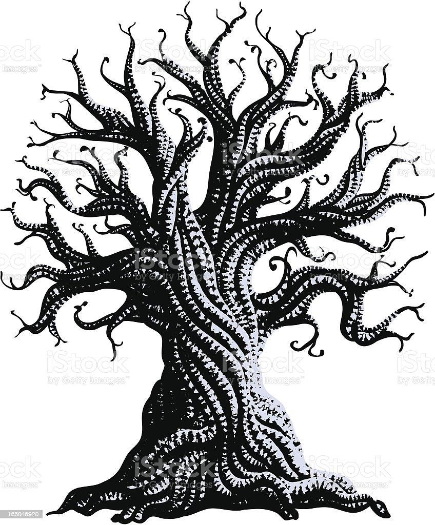 gnarly old tree vector art illustration