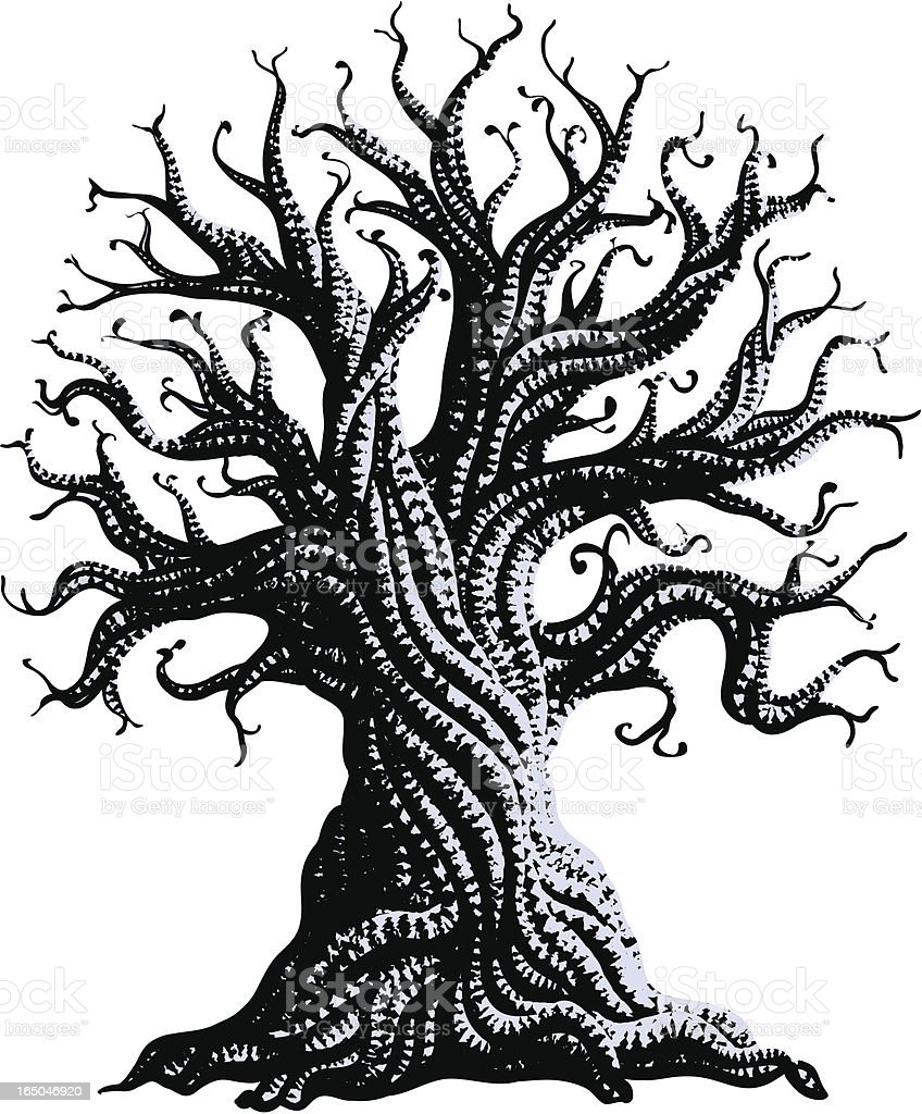 gnarly old tree vector art illustration