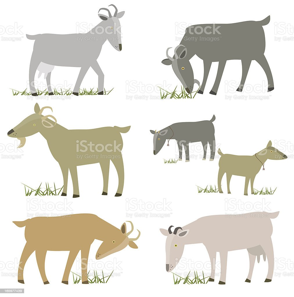 Goat and Kid vector art illustration