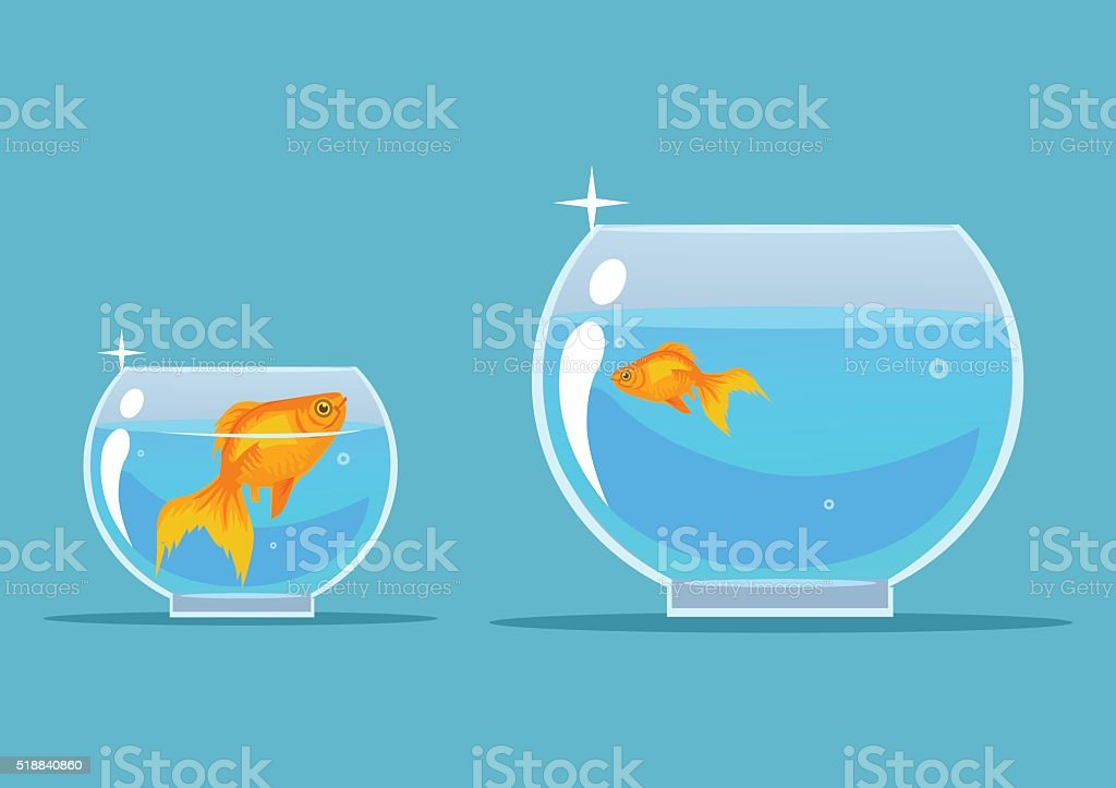Gold fish. Vector flat cartoon illustration vector art illustration