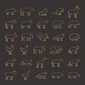 Gold line set of silhouettes animals