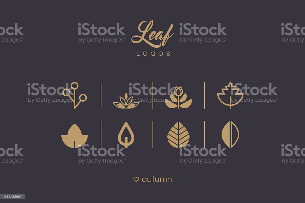 Golden minimal leaf and foliage logo icons collection vector art illustration