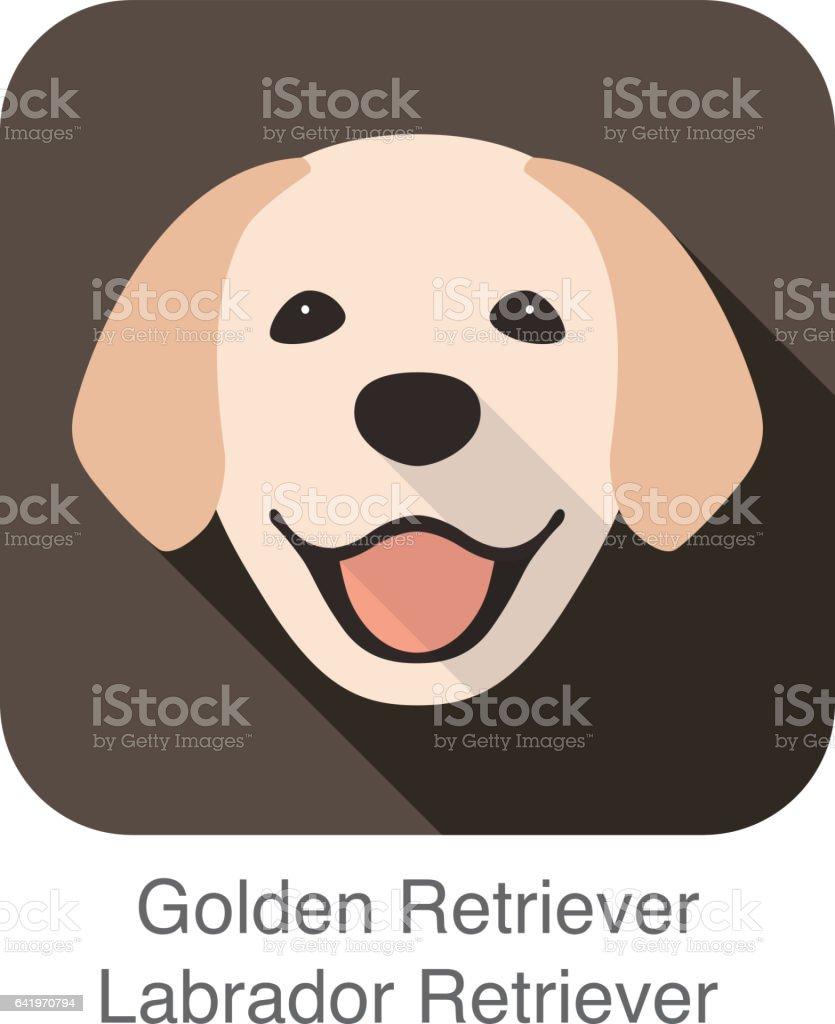 Golden Retriever face, front view vector vector art illustration