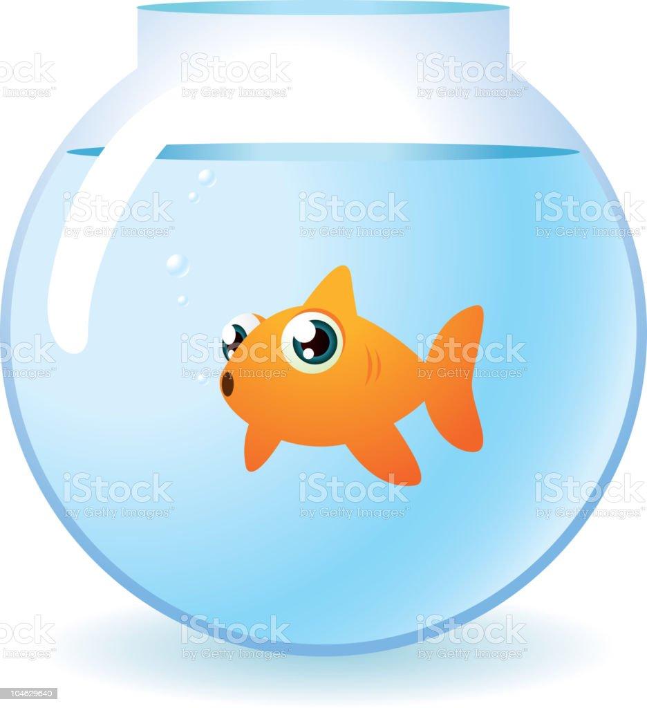 Goldfish in a bowl staring at camera with bubbles vector art illustration