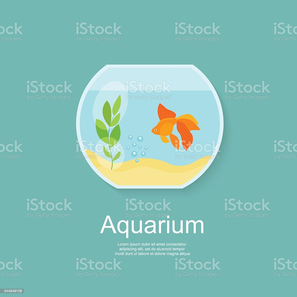 Goldfish in aquarium isolated. Flat vector illustration vector art illustration