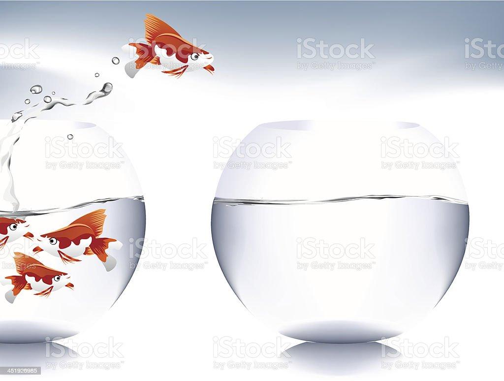 goldfish jumping royalty-free stock vector art
