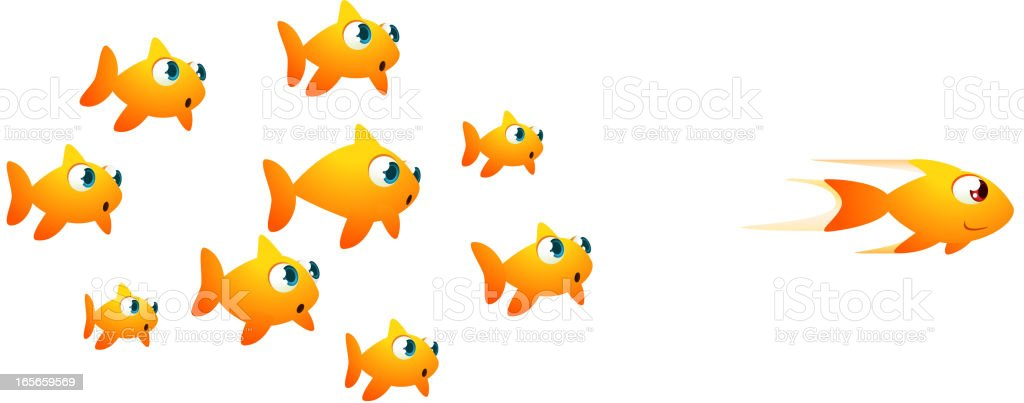 Goldfish race vector art illustration