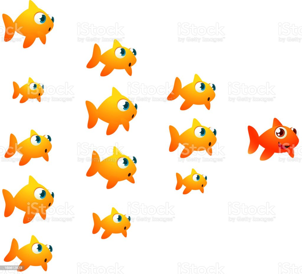 Goldfish shoal orange leader vector art illustration
