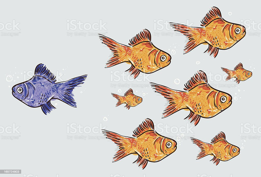 Goldfish standing out from the crowd vector art illustration
