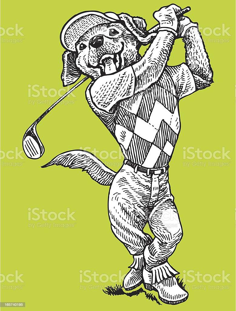 Golfer - Dog Swinging Golf Club royalty-free stock vector art