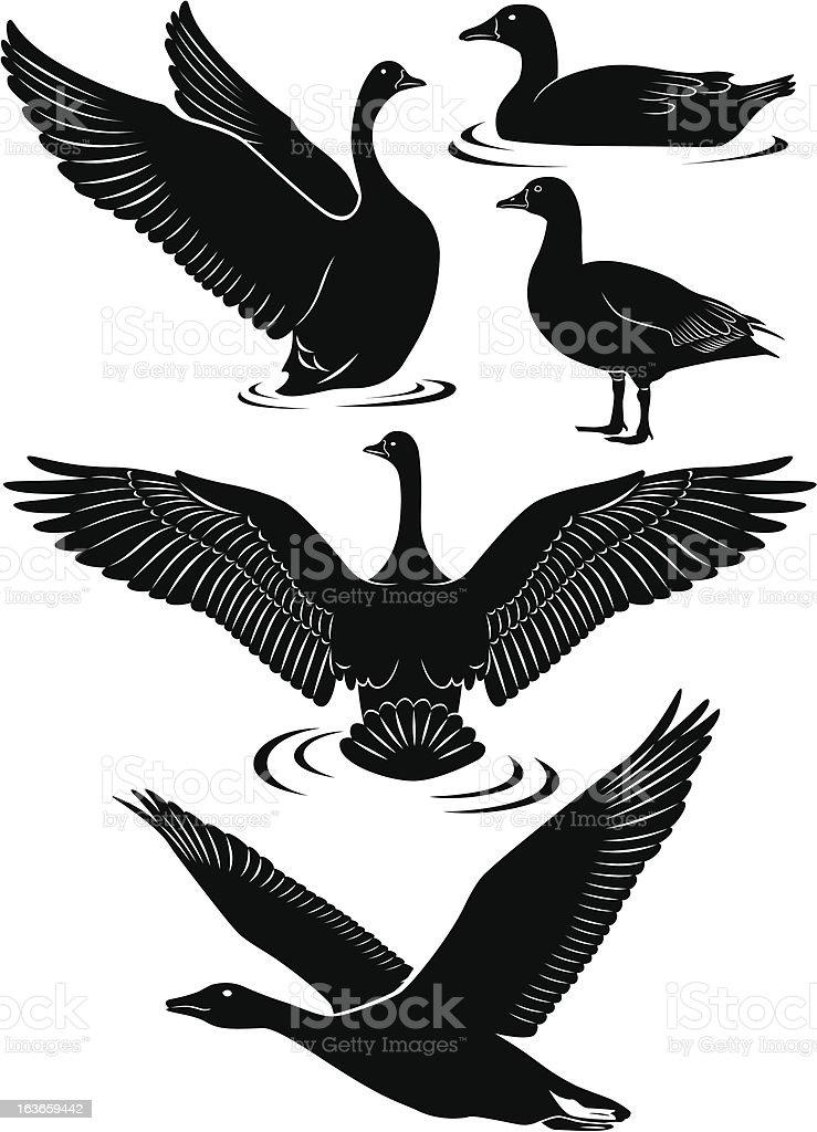 goose vector art illustration