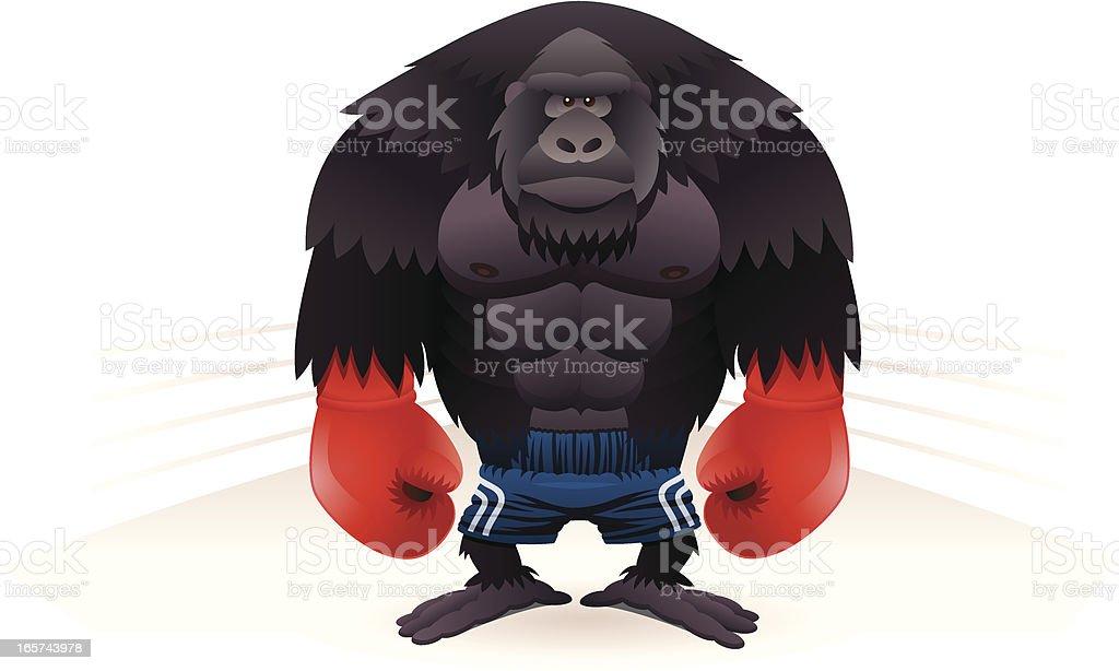 Gorilla Boxer vector art illustration