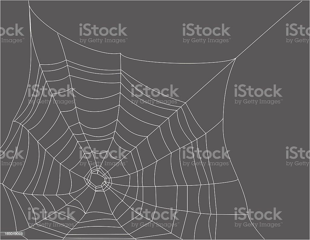 Gossamer Web vector art illustration