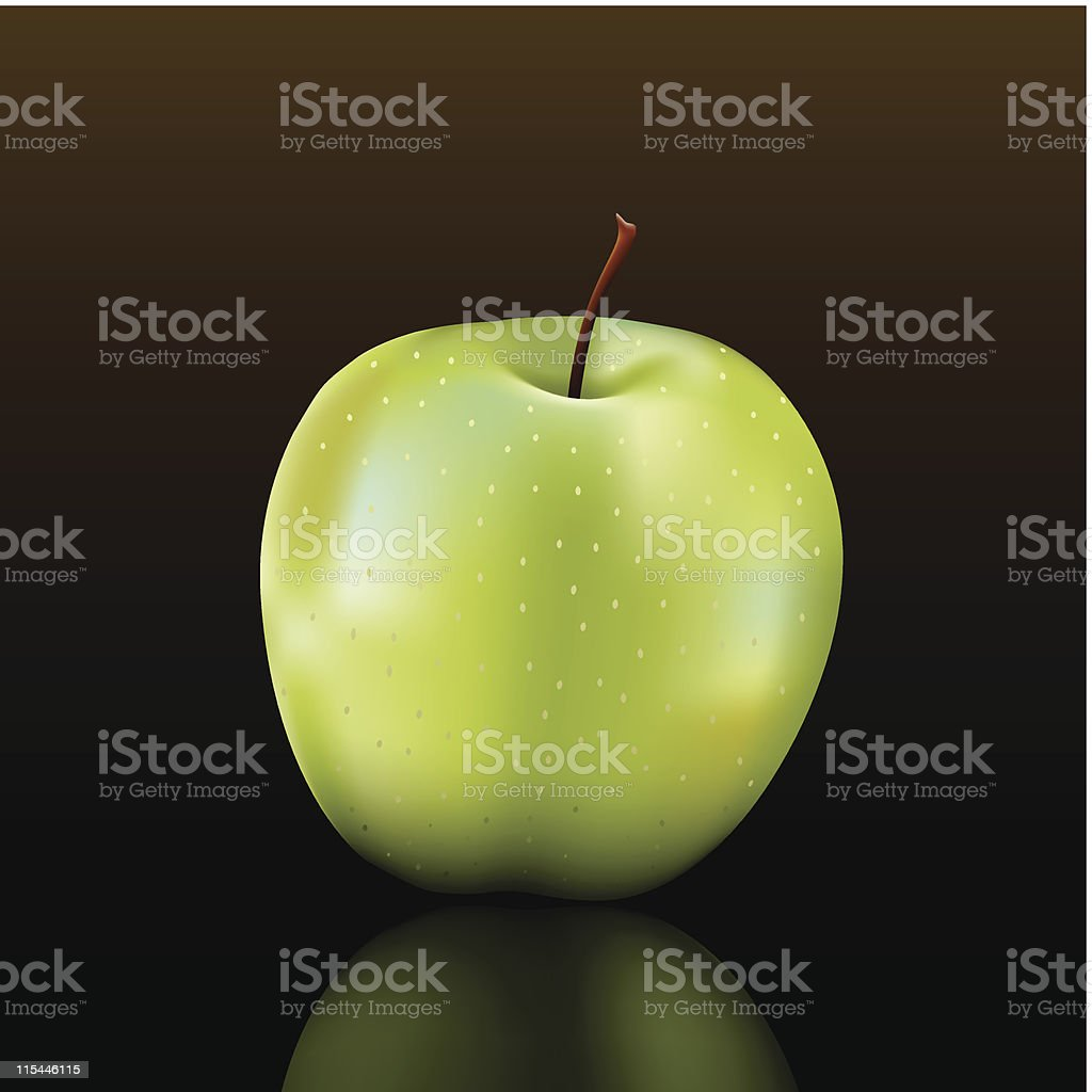 granny smith apple vector art illustration
