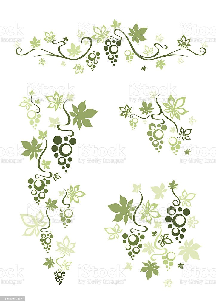 Grape decoration vector art illustration