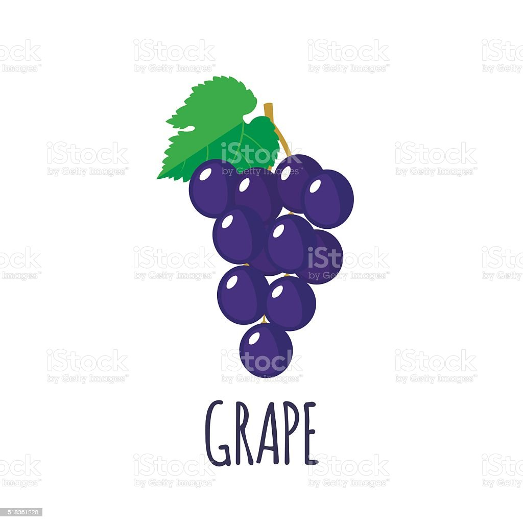 Grape icon in flat style on white background vector art illustration