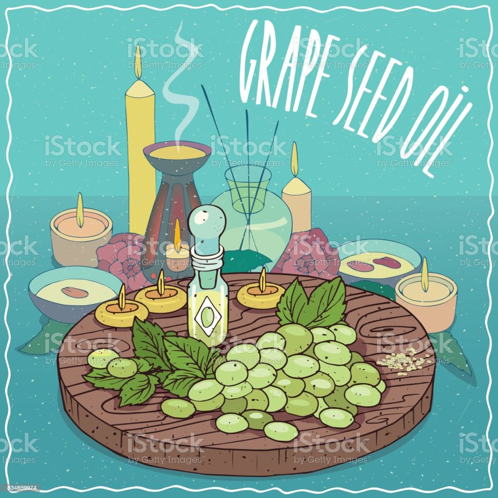 Grape seed oil used for aromatherapy vector art illustration